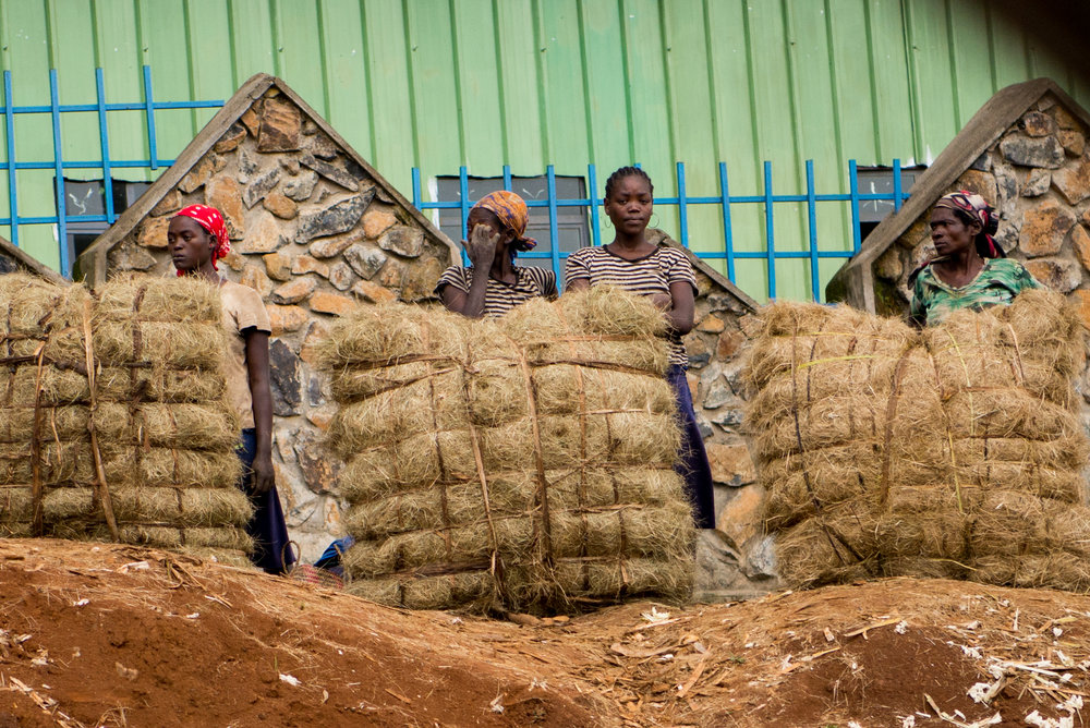 Hay for sale near Mizan Teferi