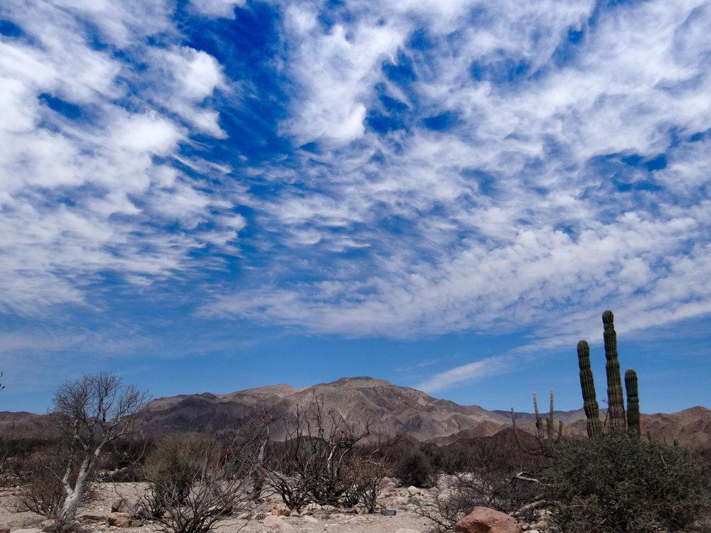 Baja2013-34.jpg
