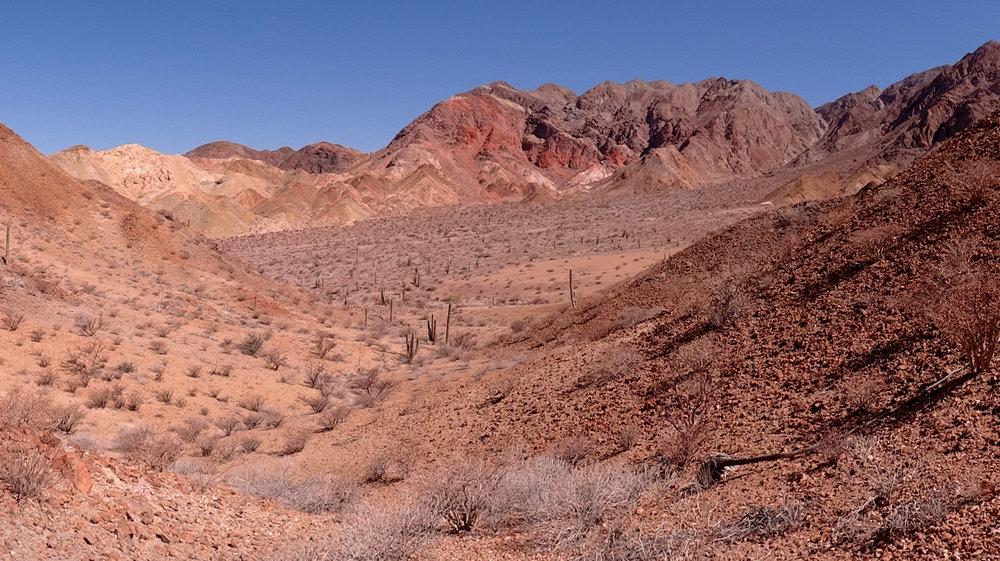 Baja2013-43.jpg
