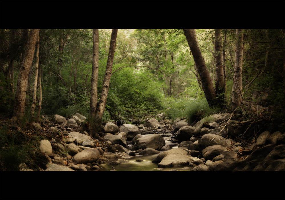 garza_creek_wide.jpg