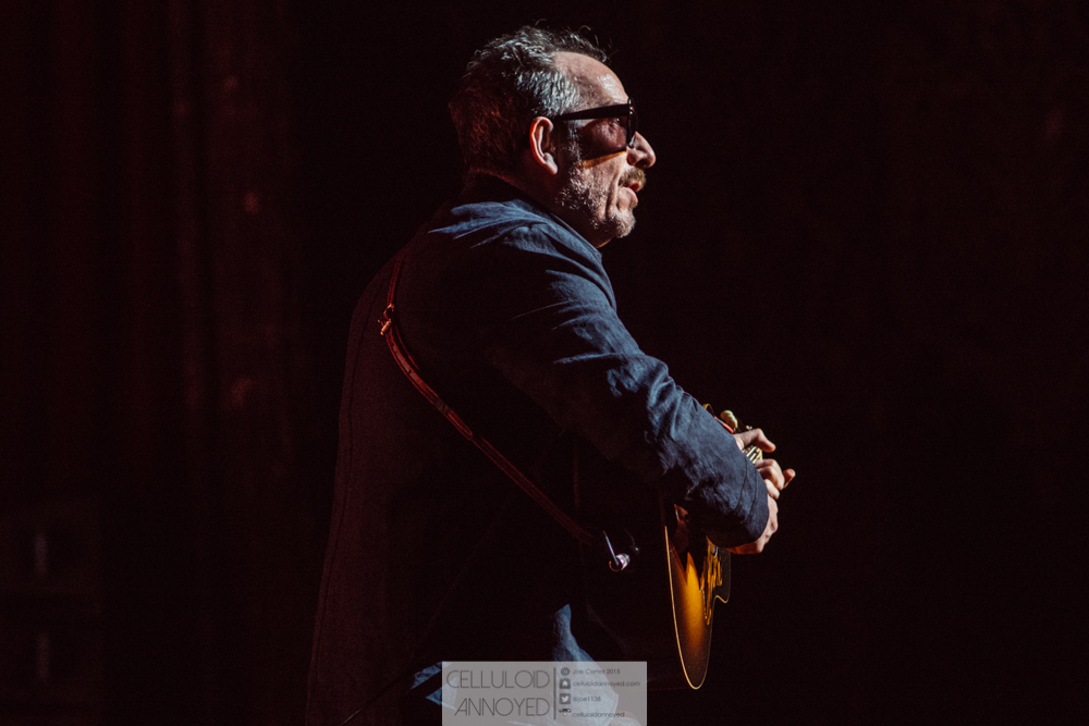 elvis costello-8.jpg