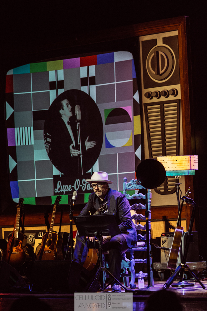 elvis costello-11.jpg