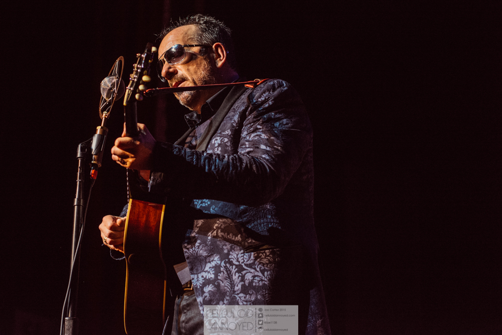 elvis costello-15.jpg