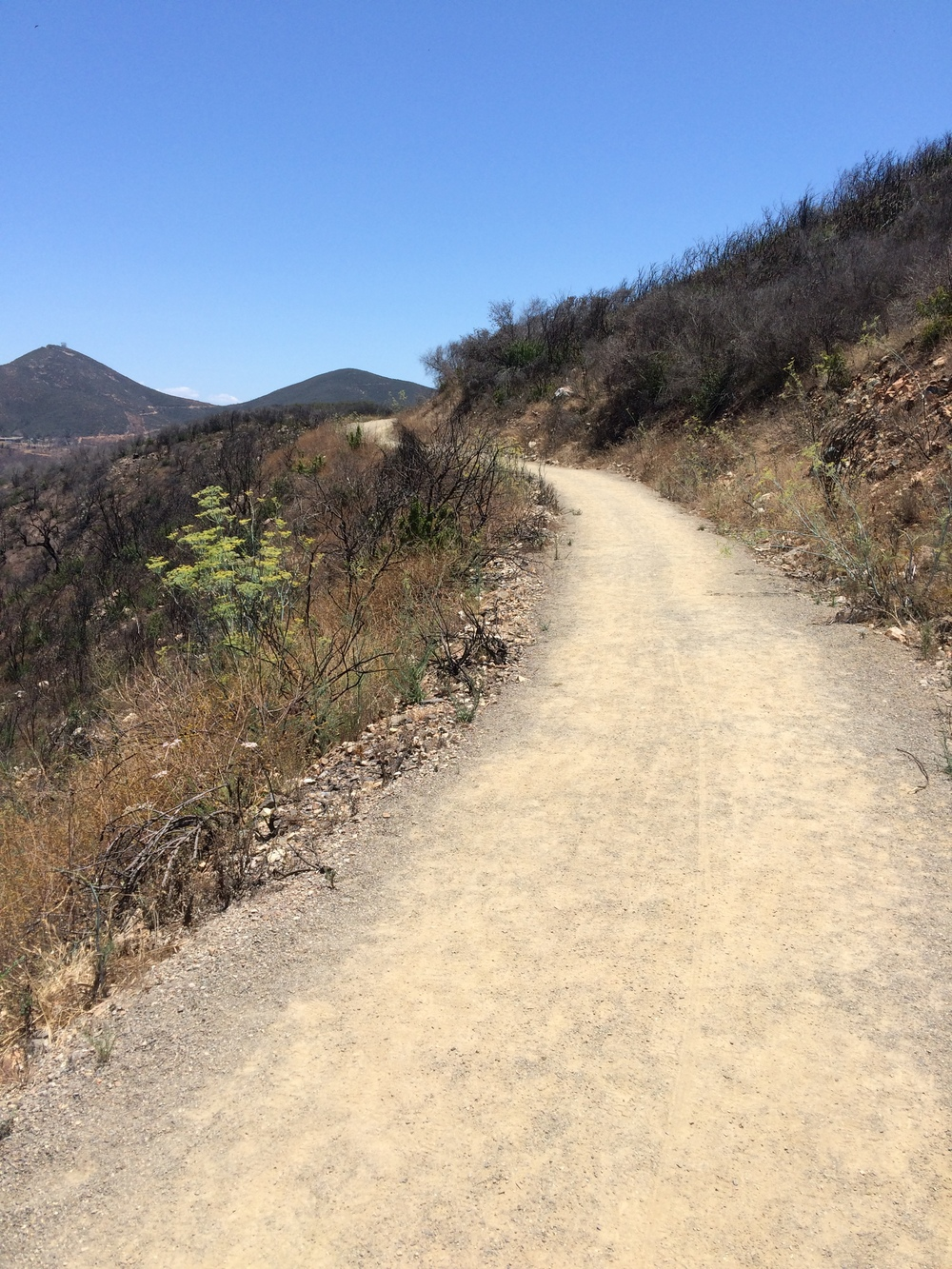 CJ showed me this gravel hiking trail that had no idea about, despite it being right off of my favorite North County climb, Double Peak.