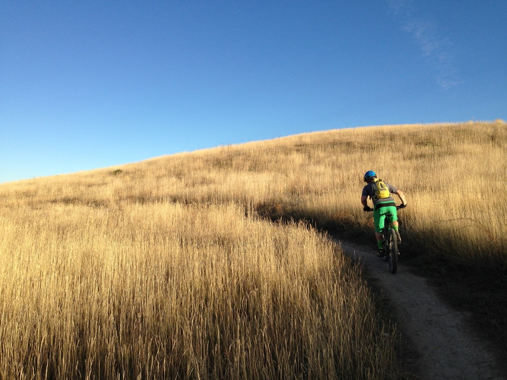 Jesse H cruising through golden fields in Marshall Mesa, Boulder.