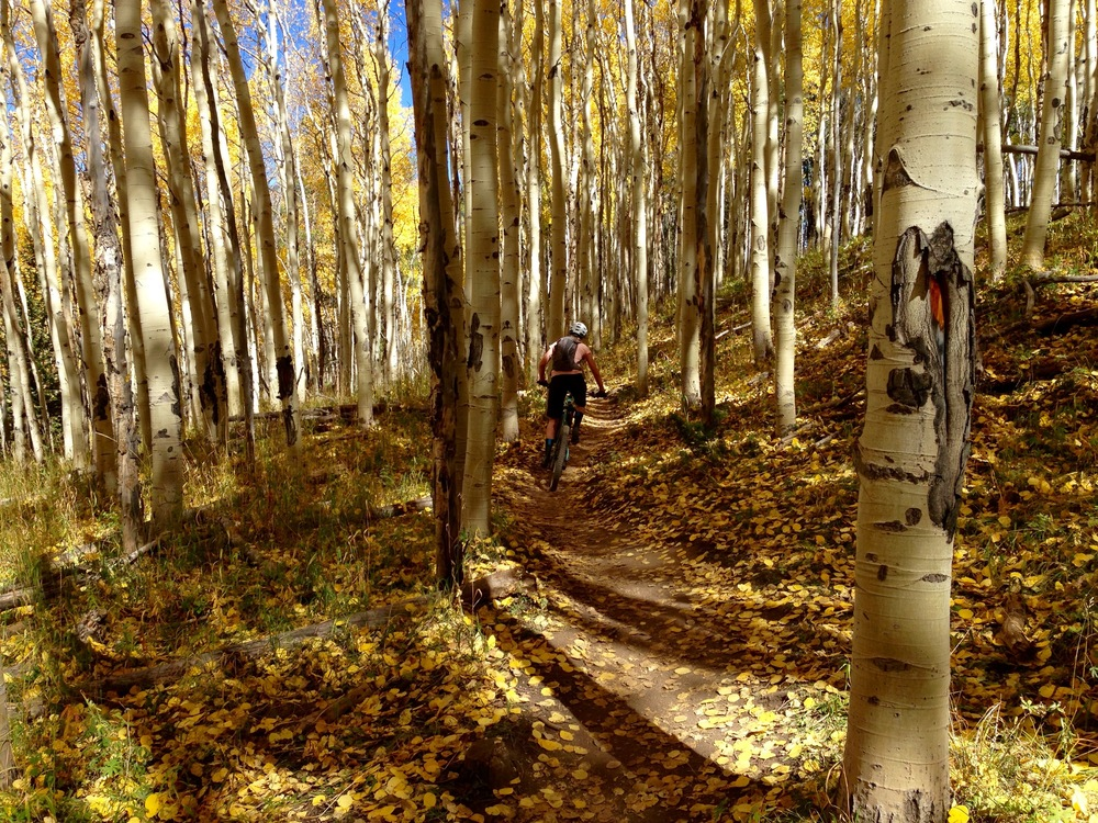 Marlijne C gliding through the Aspens, Vail, CO