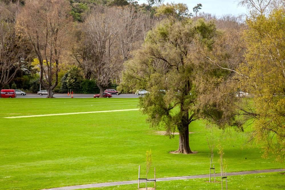 Gardens ground Dunedin
