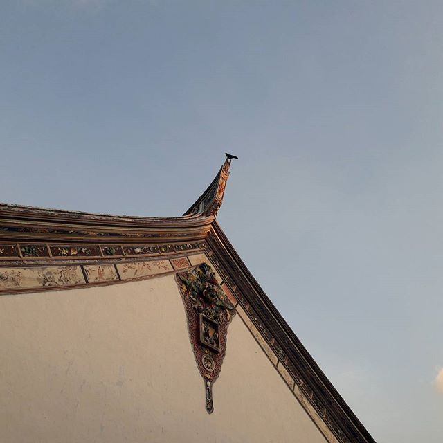 A bird was nesting in the dragon's mouth, just to be lucky #skyline