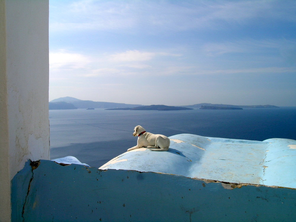 Santorini Sentinel - Santorini, Greece.jpg