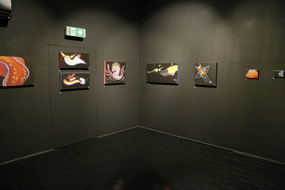 gallery39.jpg