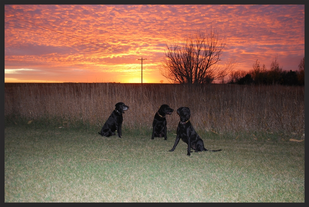 Kole, Keo and Willson Sunset