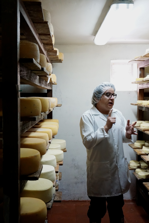 Sebastian on the cheese tour