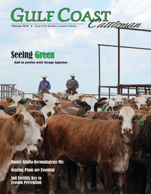 View us online now –click on image above for digital magazine.