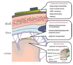 Fig. 2. Diagram showing the design and placement of the system. The interrogator is implanted immediately below the dura mater with the neural dust scattered through the cortex. An external transceiver is used to charge and operate the system.
