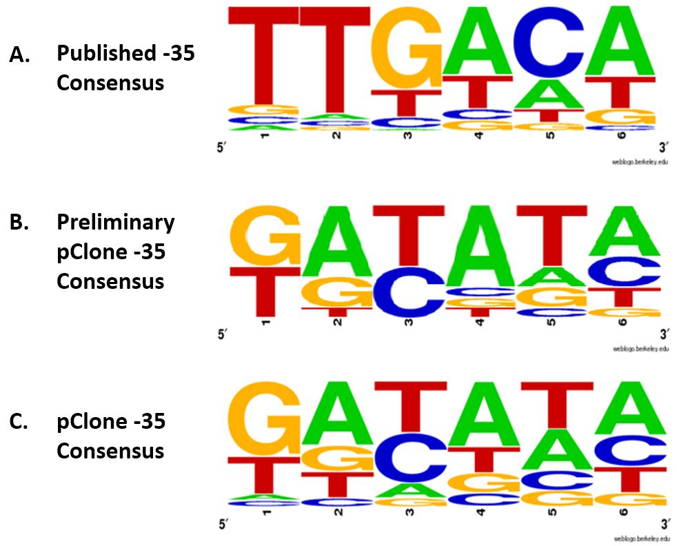 Figure 5. Consensus sequences of the -35 region.  (A) Published -35 consensus based on 263 naturally occurring  E. coli  promoters (Harley & Reynolds, 1987); (B) Preliminary pClone -35 consensus was determined from the the top 12 mutant promoters with >50% efficiency compared to Ptac; (C) pClone -35 consensus was determined from sequences found in all 81 selected promoters. using a weighted consensus method.