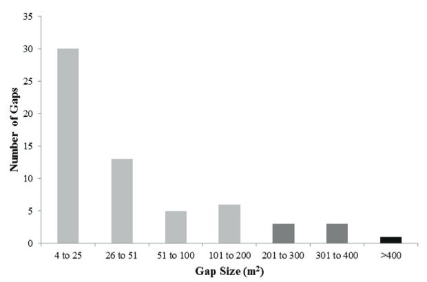 Figure 7. Number of gaps of each size class.  Light gray, dark gray, and black bars represent small, medium, and large gap size classes, respectively.
