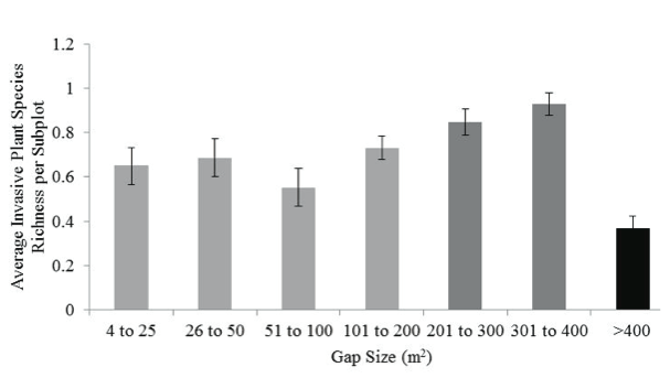 Figure 8. Mean invasive plant species richness per subplot stratified by gap size.  Error bars show the standard error of richness values for all subplots in each size class. Light, medium, and dark gray bars indicate gaps in the small (<200m2), medium (200-400m2), and large (>400m2) size classes, respectively.