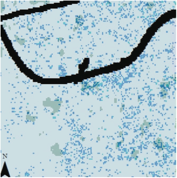 Figure 9. GIS image of the nine-hectare study area showing invasive species richness and canopy gaps.  The gaps are represented as shaded gray areas while non-gap areas appear in a very light blue. Areas with higher invasives species richness are depicted by darker blue and those with lower invasive species richness are represented by lighter blue. The roads are depicted as black lines.
