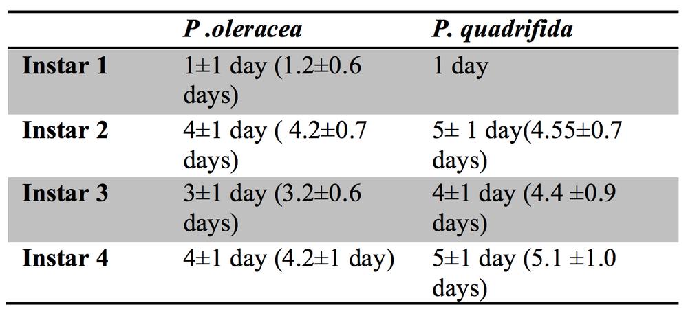 Table 1.  Mean Number of Days of instar stages of Danaid eggfly larvae fed Portulaca oleracea versus Portulaca quadrifida (± s.d.).
