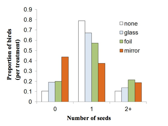 Figure 3. Effect of feeder attachment (none, glass, foil, or mirror mounted on a feeder) on mean number of seeds handled by Black- capped chickadees.  The feeders were set up with no object, glass, foil, or mirror. Each bar shows the proportion of chickadees that took the given number of seeds. The proportions were calculated individually on data within each treatment.