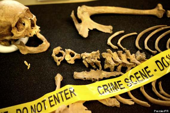 Forensic Anthropologists Have A Bone To Pick With Tv Crime Shows Journal Of Young Investigators