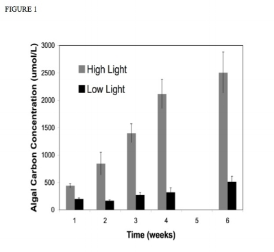 Figure 1. Time series of algal carbon concentration comparing high light and low light treatments. High light treatments experienced much higher carbon concentrations than low light (P
