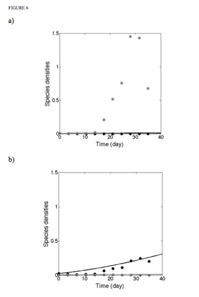 Figure 6. Comparison of observed Daphnia populations against simulated results with adjusted parameters for a) high light and b) low light conditions with D. pulex (black) and D. lumholtzi (grey).