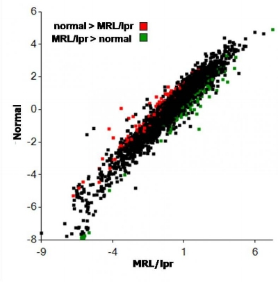 Figure 8. Scatterplot showing relative gene expression levels between lacrimal acinar cells of MRL/lpr and normal mice. Gene expression is expressed as log2 compared to reference standard. Several genes discriminating between diseased and normal acini are shown in Table 3.