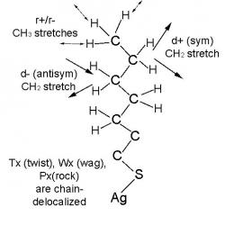 Figure 2: Key vibrational modes of organic residue of AgS(CH2)nCH3.Larger version