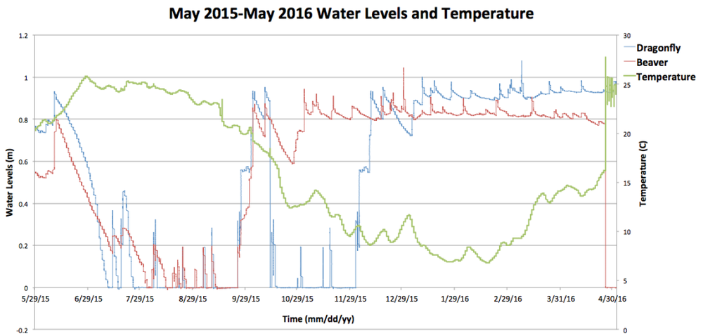 Figure 4.   Water level fluctuations (m) and Temperature (C) from May of 2015 to May of 2016.  Blue line indicates the Dragonfly wetland, and red line indicates the Beaver wetland water levels (primary vertical axis). Green line indicates Temperature in C (secondary vertical axis).