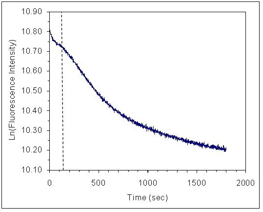 Figure 5. Time-dependent change in tryptophan fluorescence induced by complex formation between avidin and photodamaged native DNA. Tryptophan florescence was excited at 275 nm and detected at 340 nm. The concentration of DNA and avidin-FITC were approximately 2 pM and 5 nM, respectively. Data was collected at a rate of 1 point/second. The approximate boundary between the fast and slow kinetic phases is marked by the dashed vertical line at t = 120 seconds. The data shown represent one trial out of two independent trials.