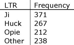Table 2. LTR Frequency. This table gives a numerical breakdown of the most common LTRs found. Ji was the most common with 371 occurrences, followed by Huck and Opie with 267 and 212 respectively. The remaining 238 LTRs were assorted.