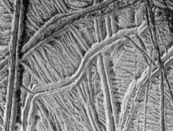Ice ridges: Europa's surface is like a giant ball of twine - but each thread is a ridge of solid ice, kilometers high. This image shows many intersecting ice ridges. (Click to view larger image) Courtesy of Galileo Project, NASA