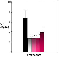Figure 3. Effects of E2 and heptachlor on GH release in the pituitary. Control fish exhibit a high amount of GH in media. E2 and heptachlor treatments decrease the amount of GH released into the media. Black = control; White = 100 nM E2; Light Pink - 1 nM Heptachlor; Pink = 10 nM Heptachlor; Dark pink = 100 nM Heptachlor; *p