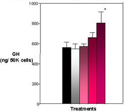 Figure 4. Effects of E2 and Heptachlor on Pituitary GH Content. Both the 10 nM and 100 nM treatment appear to harbor more GH within the pituitary cells with the 100 nM treatment being the most significant. Black = control; White = 100 nM E2; Light Pink - 1 nM Heptachlor; Pink = 10 nM Heptachlor; Dark pink = 100 nM Heptachlor; *p