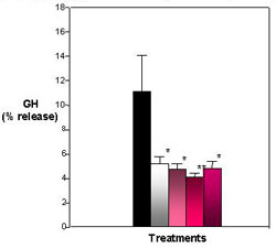 Figure 5. Effects of E2 and Heptachlor on GH Release. Percent release is determined by comparing the GH released into media to the GH measured in the cell content. E2 and heptachlor suppress the release of GH. Black = control; White = 100 nM E2; Light Pink - 1 nM Heptachlor; Pink = 10 nM Heptachlor; Dark pink = 100 nM Heptachlor; *p