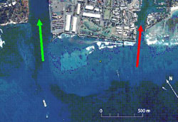 Figure 1. Aerial photo of site area offshore of Kaka'ako. Symbols: channel to Honolulu Harbor (green arrow); channel to Kewalo Harbor (red arrow).