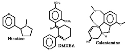 Figure 4. Chemical structures of nicotine, DMXBA, and galantamine.
