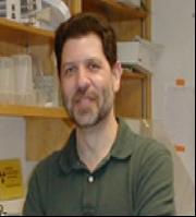 Dr. Phil Gruppuso, M.D., Associate Dean of Warren Alpert Medical School. Image courtesy of: biomed.brown.edu/Faculty/G/Gruppuso.html
