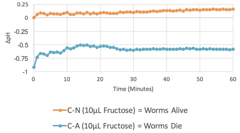 Figure 4. 10 µL Fructose ( n  = 3).  The graph plots average changes in pH over time with relation to two parameters: control minus no azide (C-N) and control minus azide (C-A). This indicates the results of change in pH when  C. elegans  are incubated with fructose, both with and without the presence of the mitochondrial inhibitor azide.