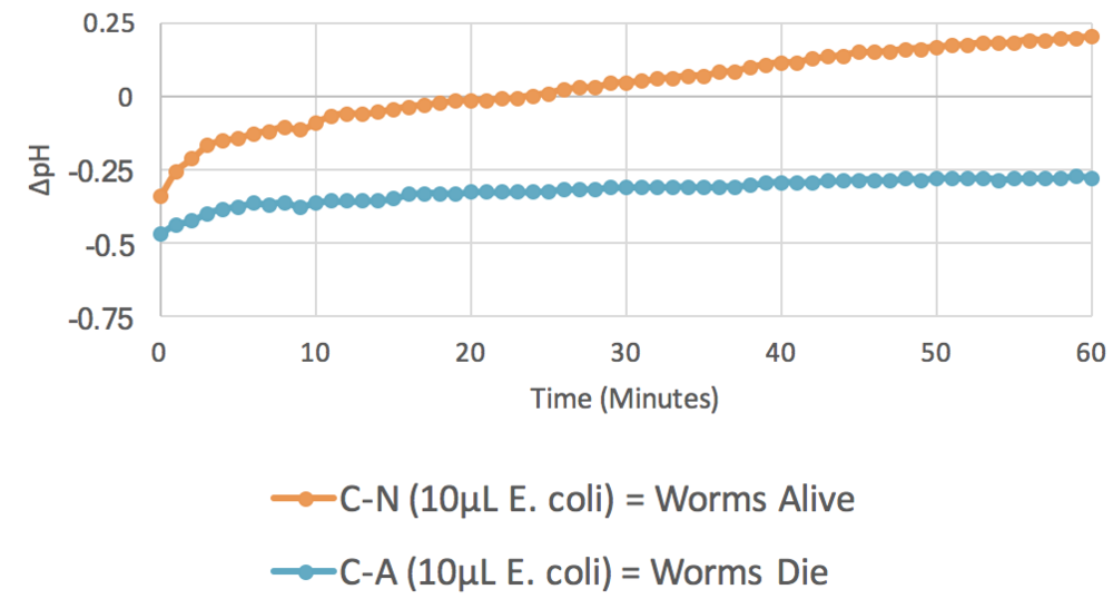Figure 2. 10 µL  E. coli  ( n  = 8).  The graph plots average changes in pH over time for two parameters: control minus no azide (C-N) and control minus azide (C-A). This shows that when mitochondria are not inhibited by azide, respiration is stimulated by the presence of the food source,  E. coli.