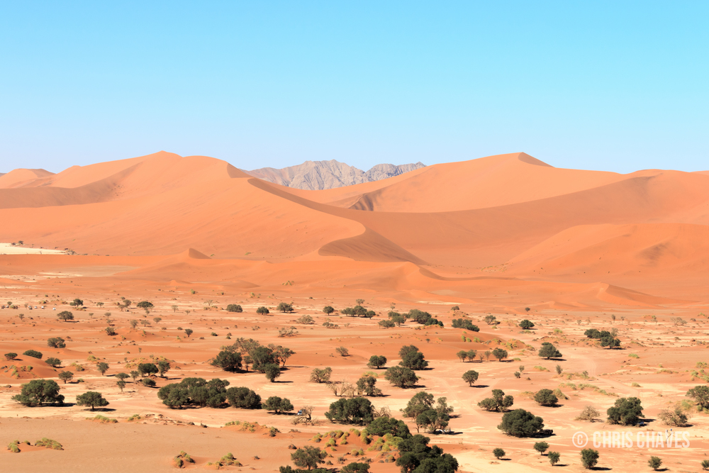 Sossusvlei in the Namib-Naukluft National Park
