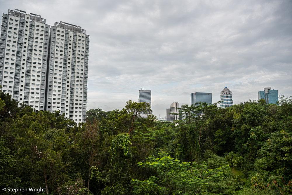 The  Garden City , Singapore.