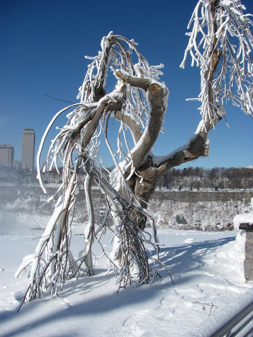 Frozen-Falls-2.jpg