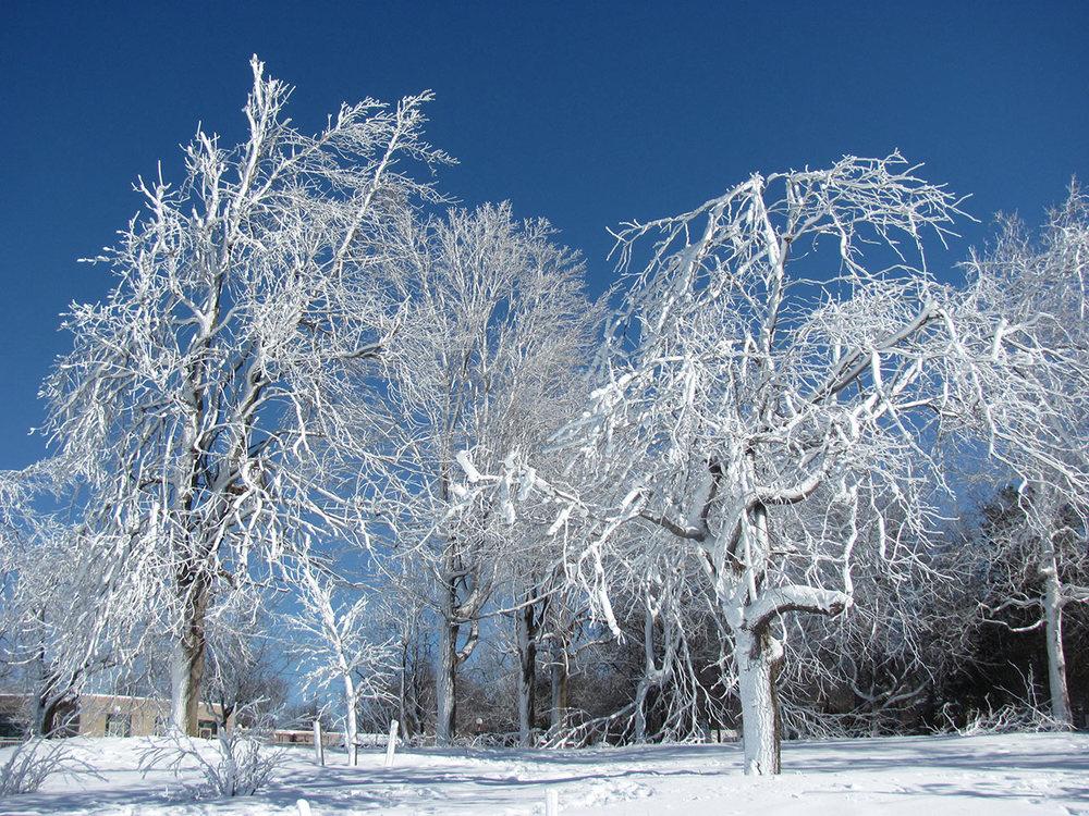 Frozen-Falls-5.jpg