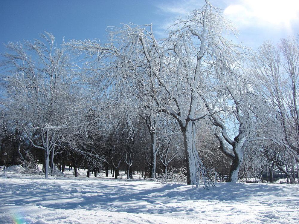 Frozen-Falls-7.jpg