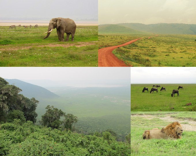 ngorongoro-crater-tanzania-safari