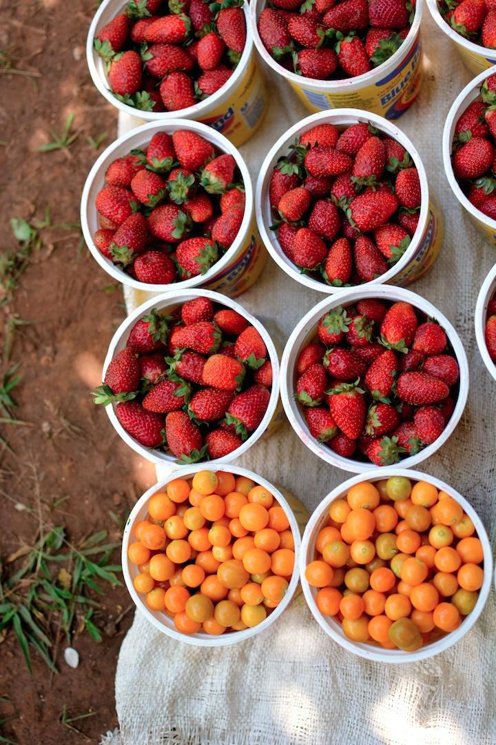 kigali-fruit-rwanda-africabagelcompany-jlynns-woman-tea-farmers-market