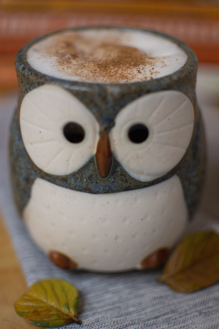 pumpkin-spice-latte-tea-sugar-free-fall-cinnamon