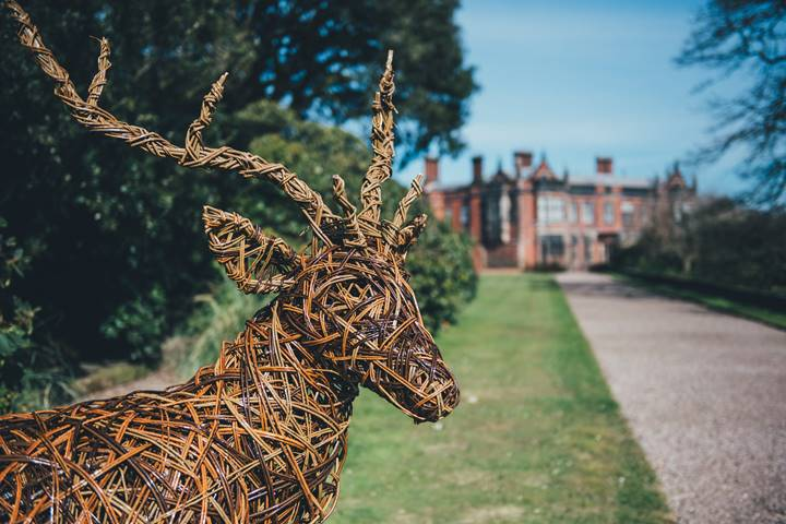 stag in front of arley.jpg